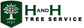H and H Tree Service